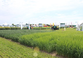 "Exhibition of Agricultural Technologies ""Agrovizija"" - 20"
