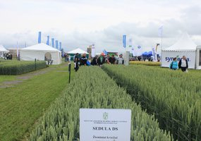 "Exhibition of Agricultural Technologies ""Agrovizija"" - 30"