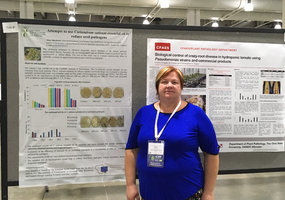4 posters of LAMMC scientists – in the International Congress of Plant Pathology - 10