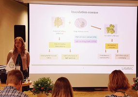 Scientists discussed about increasing yield of vegetables in Estonia - 2